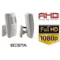 2mp Ahd Gece Görüşlü Pır Güvenlik Kamerası Besta KD-0081